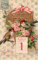 Nouvel An (Fantaisie) - Bonne Année - Deux Oiseaux - Chardonneret CPA 1903 - New Year