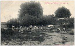 55 REVIGNY-aux-VACHES - Les Poules D'eau - Altri Comuni