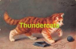 CPA ILLUSTRATEUR  CHAT CHATS SPERLICH ARTIST SIGNED CAT CATS KAT KATTEN KATZE KATZEN TRICOT KNITTING - Gatti