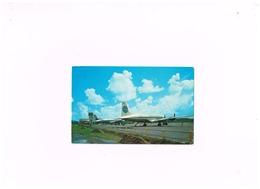 """L'Aérodrome Du Lamentin.Avions """"Pan American"""" Et """"Air France"""" - Martinique"""