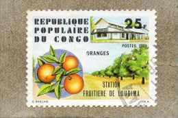 CONGO :  Fruits : Oranges - Station Fruitière De Loudima - Production Agricole - Agricultutr - Agrumes - - Congo - Brazzaville