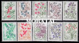 [24] 1965 French Andorra Sc  Wild Berries  ** MNH Very Nice  (Scott) - Postage Due