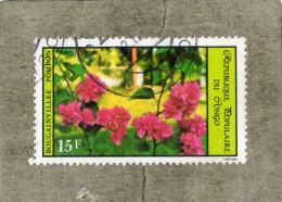 CONGO : Fleur : Bougainvillier (Bougainvillea)  - Famille Des Nyctaginaceae - Congo - Brazzaville