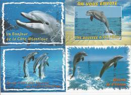22 CPM - DAUPHIN (dauphins) - Toutes Différentes - Delphine