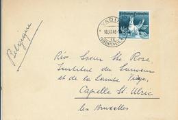 Jagdserie 1946 - Vaduz IX - Hase Im Schnee - Lettres & Documents