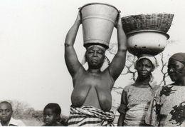 Photo 11. Afrique Noire. Femmes Aux Seins Nus. Circa 1940 12,5x8,5 - Afrique Du Sud, Est, Ouest