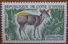 1964 COSTA D'AVORIO Animali Antilope Yellow-backed Duiker (Cephalophus Silvicultor) - 1f Nuovo - Costa D'Avorio (1960-...)