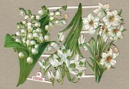 Schäfer & Scheibe N°12020 - SCRAP -  DECOUPIS  - Gaufré / Embossed - Flowers - 2 Scans - Flowers