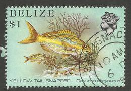 BELIZE. QE2. $1 FISH USED SAN IGNATIO POSTMARK - Belize (1973-...)