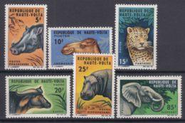 Upper Volta 1966 Animals Mi#175-180 Mint Never Hinged - Obervolta (1958-1984)