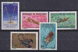 Upper Volta 1966 Animals Insects Mi#201-205 Mint Never Hinged - Obervolta (1958-1984)