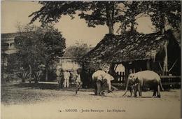 Indochina (Vietnam) Saigon // Jardin Botanique (Zoo) Les Elephants 19?? - Viêt-Nam