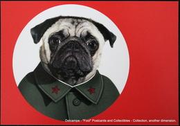 Famous Faces TAKKODA Pets Celebrity Photography Dog Célébrités Animal Chien Photographie MAO TSE TUNG  Mao Zedong - Animaux Habillés