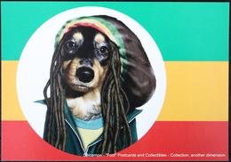 Famous Faces TAKKODA Pets Celebrity Photography Dog Célébrités Animal Chien Photographie BOB MARLEY Rasta - Animaux Habillés