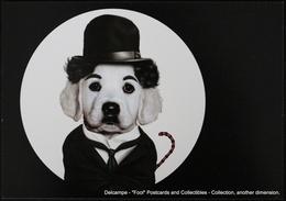 Famous Faces TAKKODA Pets Celebrity Photography Dog Célébrités Animal Chien Photographie CHARLIE CHAPLIN Charlot - Animaux Habillés