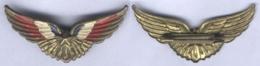 Insigne Patriotique - Armée De L'Aire - Fuerzas Aéreas