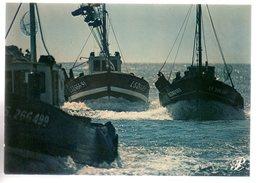 REF 472 : CPSM Collection PRESTIGE Vendée P 26 Cap Theojac - Illustrateurs & Photographes