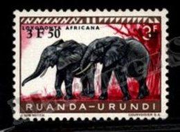 Ruanda-Urundi 1960 Yvert 224, Fauna. Mammals, Elephants - MNH - Ruanda-Urundi