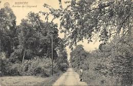 Biercée NA10: Avenue De Grignard - Thuin