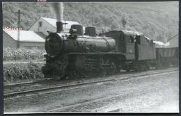 Espagne - Photo - Ferrocarril P.V. - Machine 130 N°11 - Voir 2 Scans - Treinen