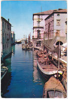 CHIOGGIA - VENEZIA - CANAL VENA -49261- - Venezia (Venice)