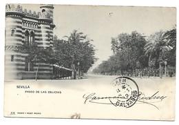 Espana - SEVILLA -  Paseo De Las Delicias - Sevilla