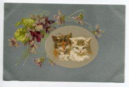 CHATS 015  Couple Petis Chats Fleurs  Des Champs  1910 - Gatti
