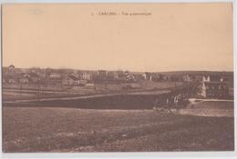 CARLING (Moselle) - Vue Panoramique - Labourage - Voie Ferrée - Francia