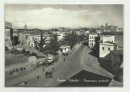 CANINO ( VITERBO ) PANORAMA PARZIALE   - VIAGGIATA FG - Viterbo