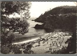 CPSM 83 - Cavalaire Sur Mer - Plage De Bon Porto - Cavalaire-sur-Mer