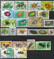 Käfer Lot 1 O/used - Insecten