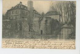 ALLEMAGNE - OBERKIRCH - Le Château - Oberkirch