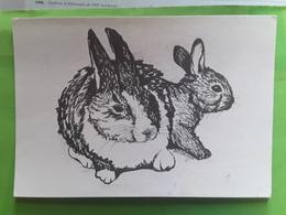 Couple De LAPINS LAPIN Rabbit , Dessin De M BRUYN Ou De Bruin , Ed Uitgave A Z , Nederland - Other