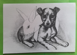 Chien Type Jack Russel Dog Et LAPIN Rabbit , Dessin De M BRUYN Ou De Bruin , Ed Uitgave A Z , Nederland - Dogs