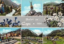Cartolina Cogne Vedute 1967 - Italy