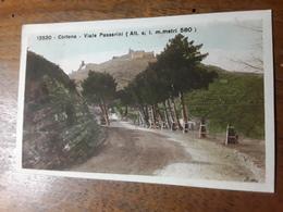 Cartolina Postale, Postcard 1923, Cortona, Viale Passerini - Arezzo