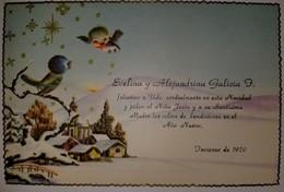 O) POSTAL CARD CHRISTMAS - WINTER - BIRDS AND LANDSCAPE, XF - Postcards