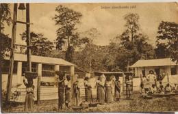 C. P. A. : GUATEMALA : Indios Cosechando Café, 5 Sellos En 1915 - Guatemala