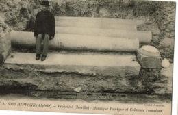 Hippone 6033 Mosaique Punique Et Colonnes Romaines - Algérie