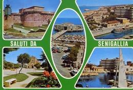 Saluti Da Semigallia - Formato Grande Viaggiata – E 15 - Senigallia