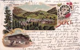 Suisse - Vaud -  SEPEY - Litho 1904 - VD Vaud