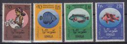 Somalia 1962 Fish Mi#35-38 Mint Hinged - Somalia (1960-...)
