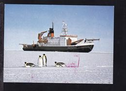 "MS ""Polarstern"" - Paquebots"