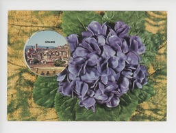 Grasse - Violettes De Parme (vue Générale) Cp Vierge - Grasse