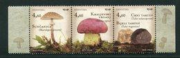 SALE  Croatia 2013  MNH  Mushrooms - Pilze