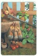 1991 Pocket Calendar Calandrier Calendario Portugal Caça Hunting Chasse Caza - Calendriers