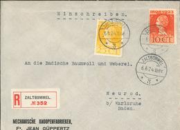 Knopffabrik Güppertz Zalt-Bommel - R-Brief Nach Karlsruhe 1924 - 25 Jahre Wilhelmina - 1891-1948 (Wilhelmine)