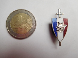 Bel Insigne De Boutonniére ( No Pin's ) , Armée Militaire , Légion Française Des Combattants , Pétain , En EGF - Heer