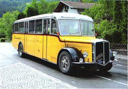 Old Bus FBW - Buses & Coaches