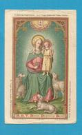 IMAGE PIEUSE HOLY CARD SANTINO IMMAGINETTE SACRE SAINT AUGUSTIN BRUGGES BRUGES MARIE MERE DU DIVIN PASTEUR 1901 - Images Religieuses